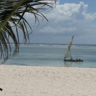 Keenia: Rannikukalurid India ookeanil.