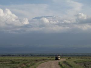 Kes pilku teritab, võib seal ülaservas näha Kilimandjaro tippu, mis end Amboseli hommikutaevas meid vaid lühikeseks ajaks õnnistas.
