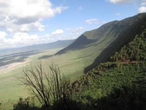 Meie džiip rühkimas Ngorongoro kraatrist välja. See punane peenike jutt seal kaldeera serval on väljasõidutee.