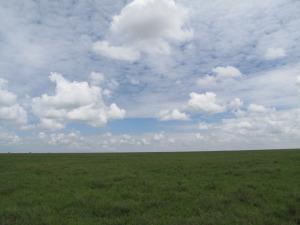 Selline ta on, Serengeti tasandike silmapiirini laiuv avarus.