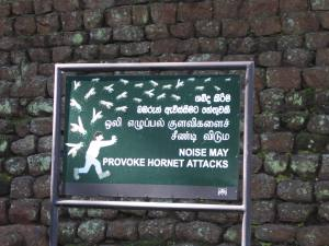 Singali kaunis lillekiri hoiatab tegemast kõva kisa, et mitte ärritada herilasi. Silt Lõvikalju Sigiriya juurest.