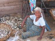 Sri Lanka: Naerusuine memm Negombo kalaturul kalu rookimas.