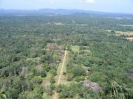 Sri Lanka: Sigiriya kalju otsast alla vihmametsale vaadates.