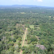 Sri Lanka: Sigiriya kalju otsast alla vihmametsale vaadates. Ei ole drooniga tehtud :)