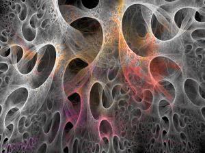 Sidekude läbi mikroskoobi. foto: internet.